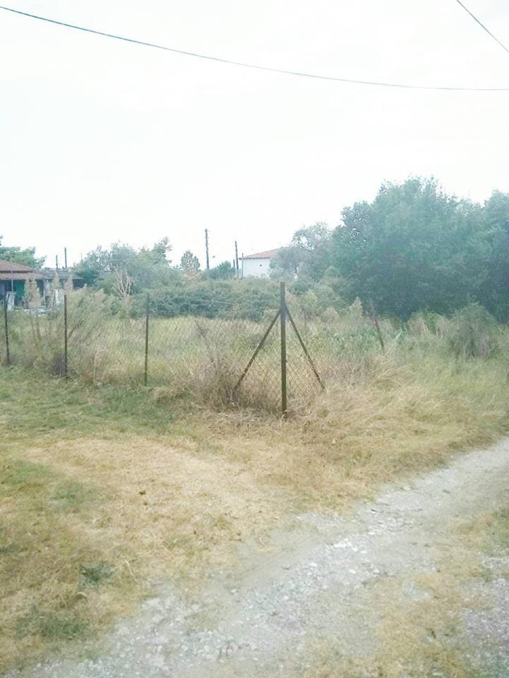 Οικόπεδο
